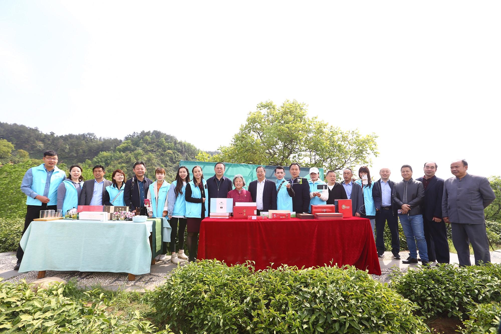 陕西网上茶博会产地行活动商洛专场