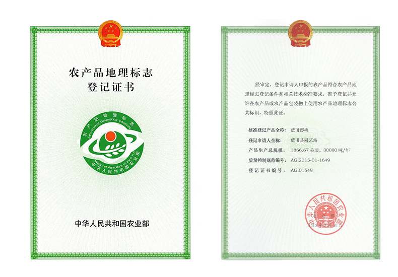 陕西区域公共品牌樱桃的农产品地理标志登记证书