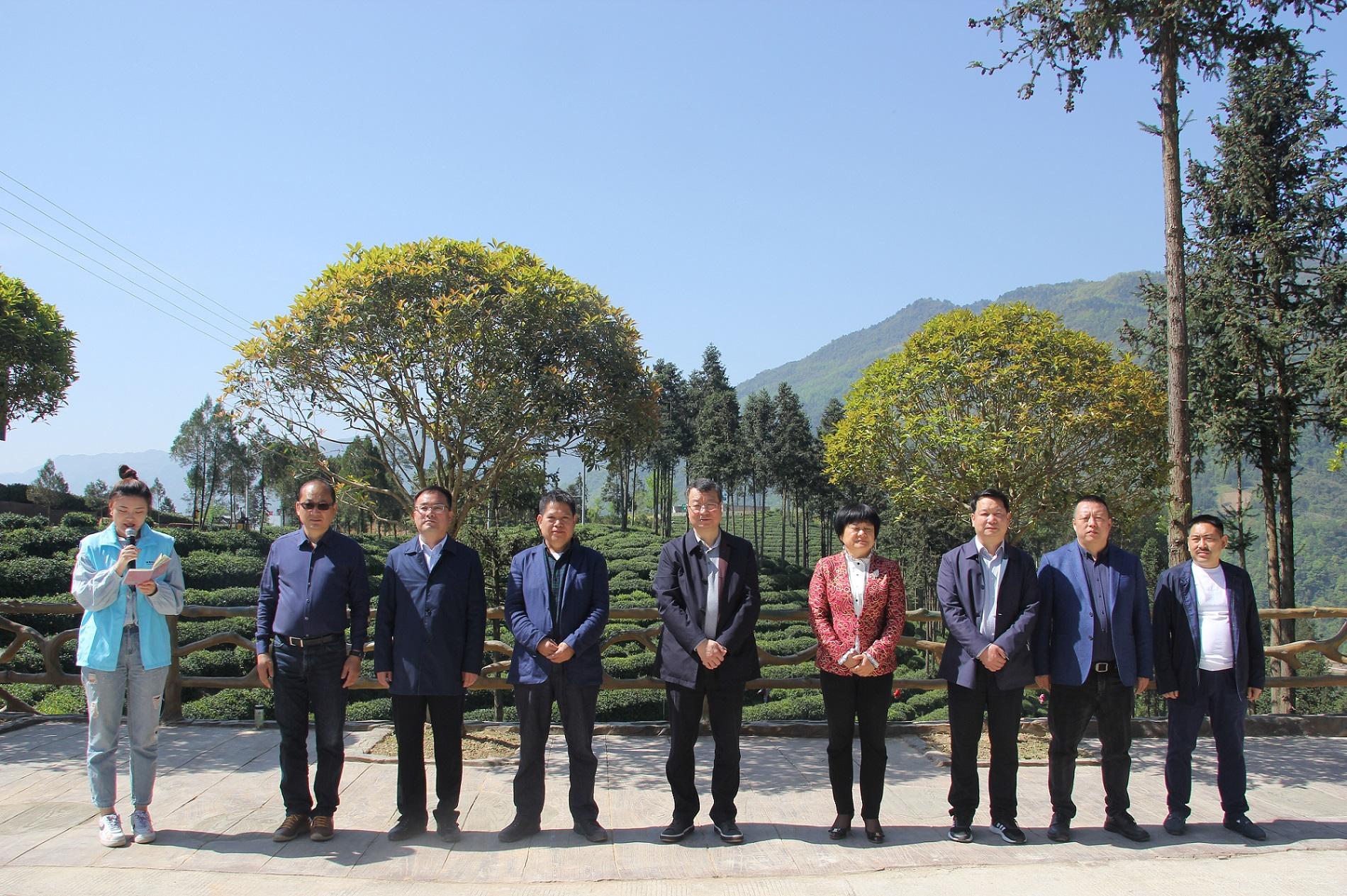陕西省农业厅副厅长王韬、陕西省商务厅副厅长郭绍敏等人为陕茶代言