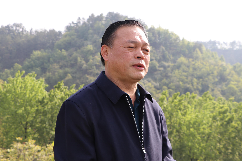 商南县副县长徐贤斌为商南茶代言