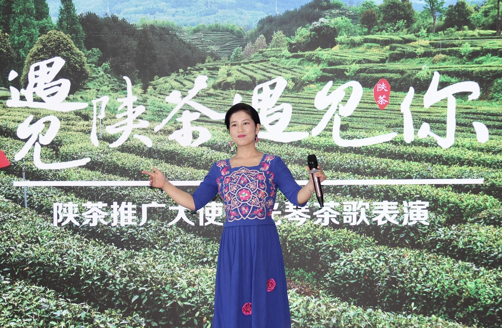 陕南民歌传承人彭光琴