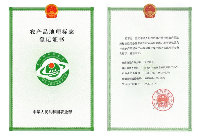 长安草莓农产品地理标志登记证书