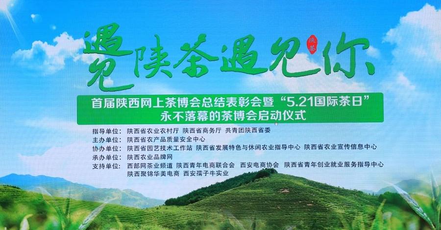 陕西茶博会海报